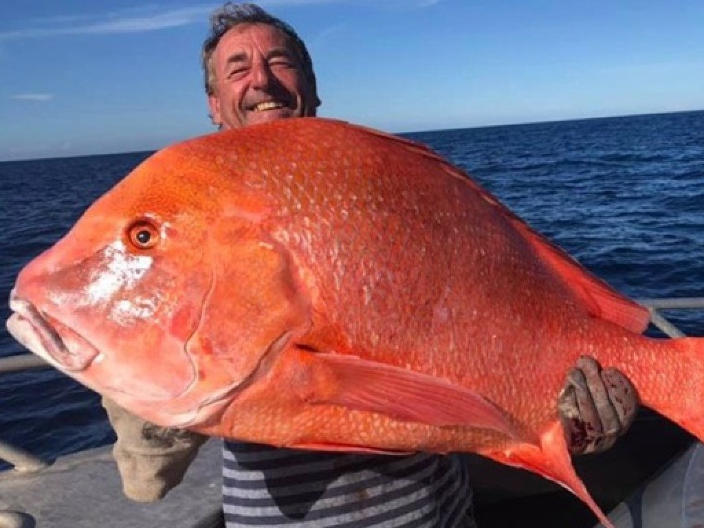Гигантский улов: неподалеку от Рейнбоу-Бич рыбак вытащил из воды рыбу весом 22 кг (фото)