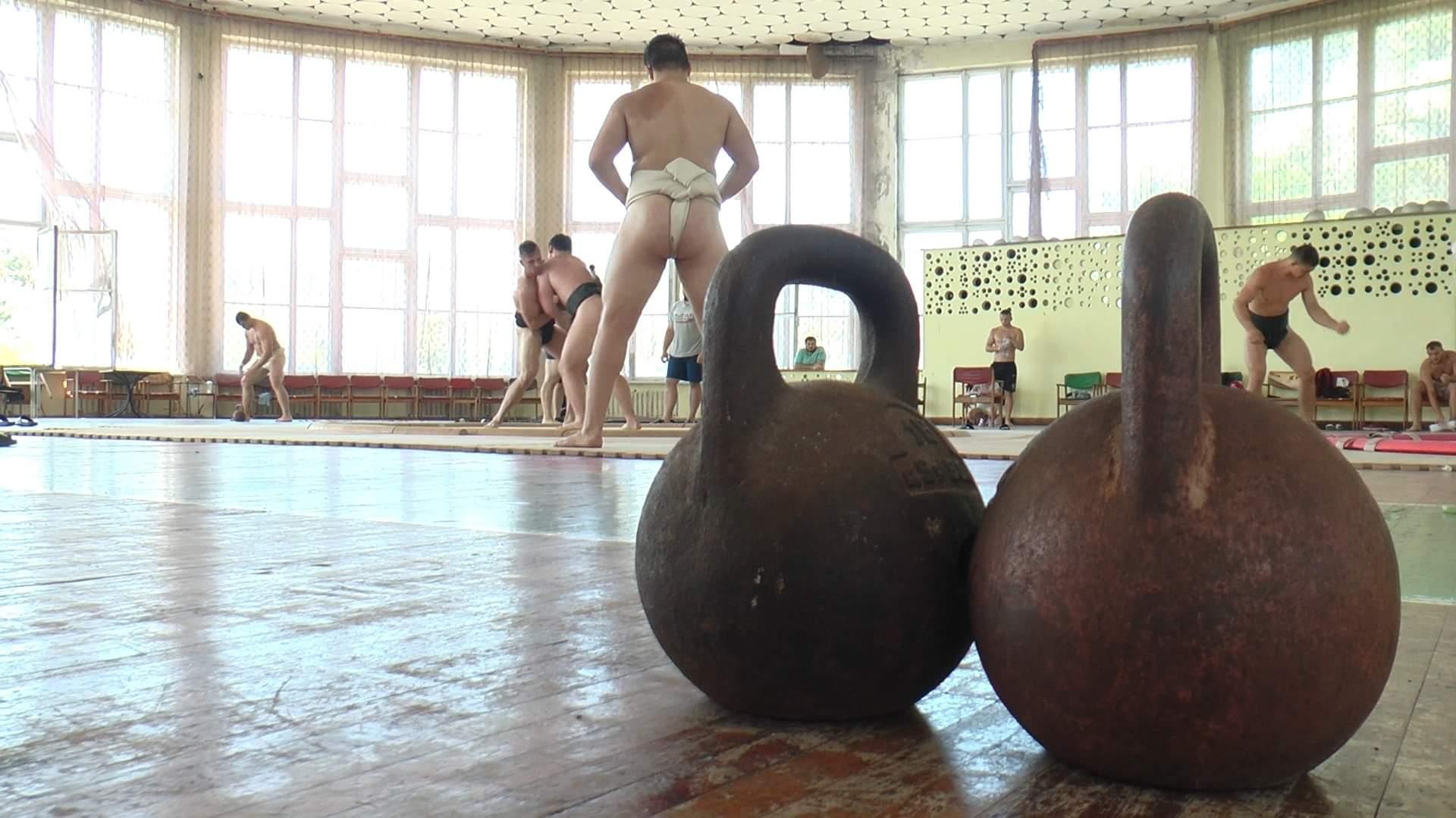 В Харьковской области тренируется сборная Украины по сумо (фото)