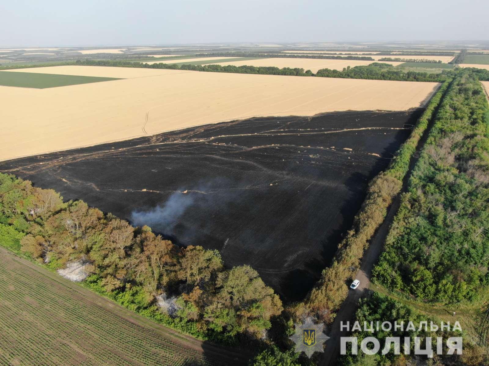 Полиция устанавливает причини пожаров на пшеничных полях Харьковщины