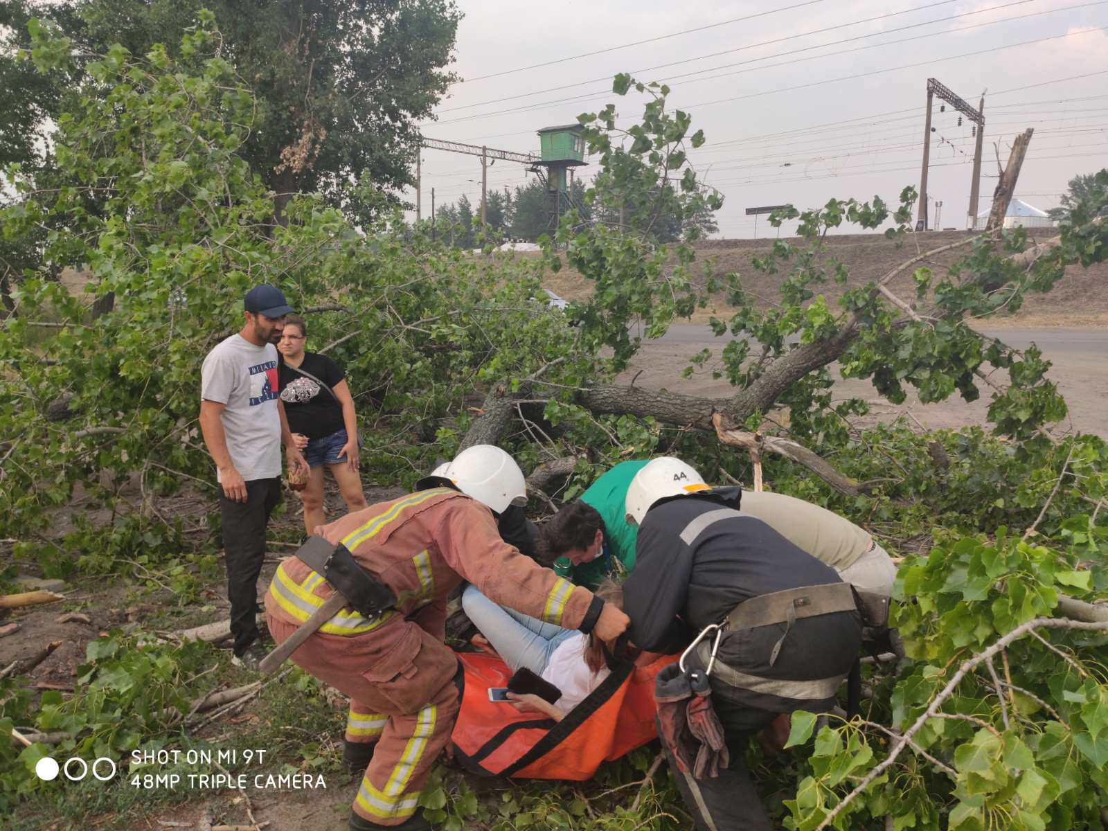 Жительницу Харьковщины придавило деревом (фото)