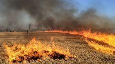 Пшеничные поля на Харьковщине поджигают маленькие дети