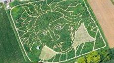 В Германии «вырастили» портрет Бетховена (видео)