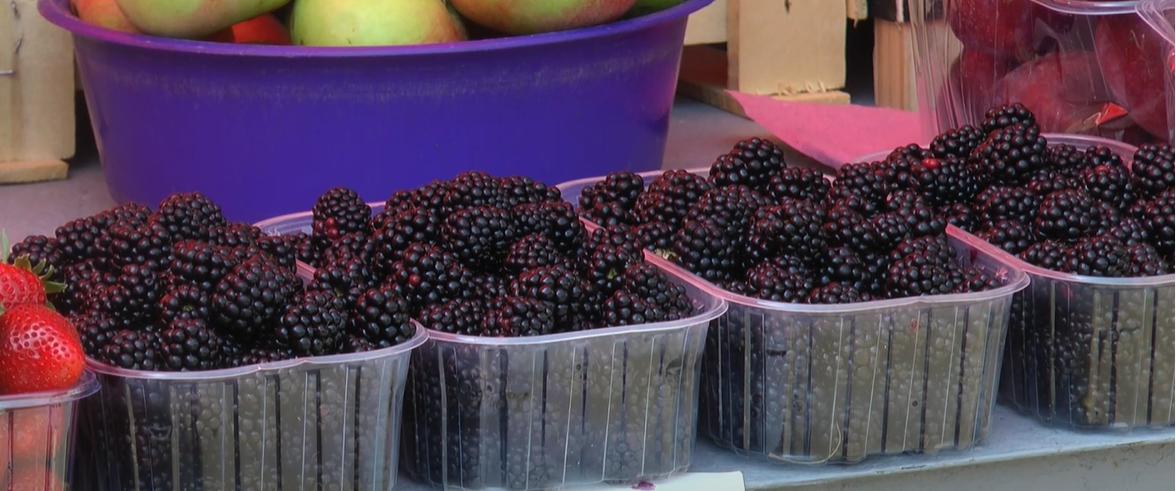 Харківські продавці розповіли, які фрукти можуть незабаром подешевшати (відео)