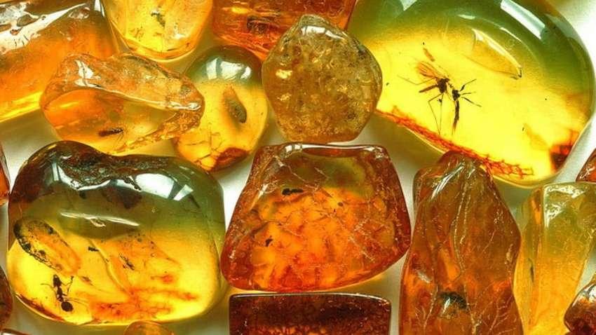 В Украине получены первые официальные разрешения на добычу янтаря