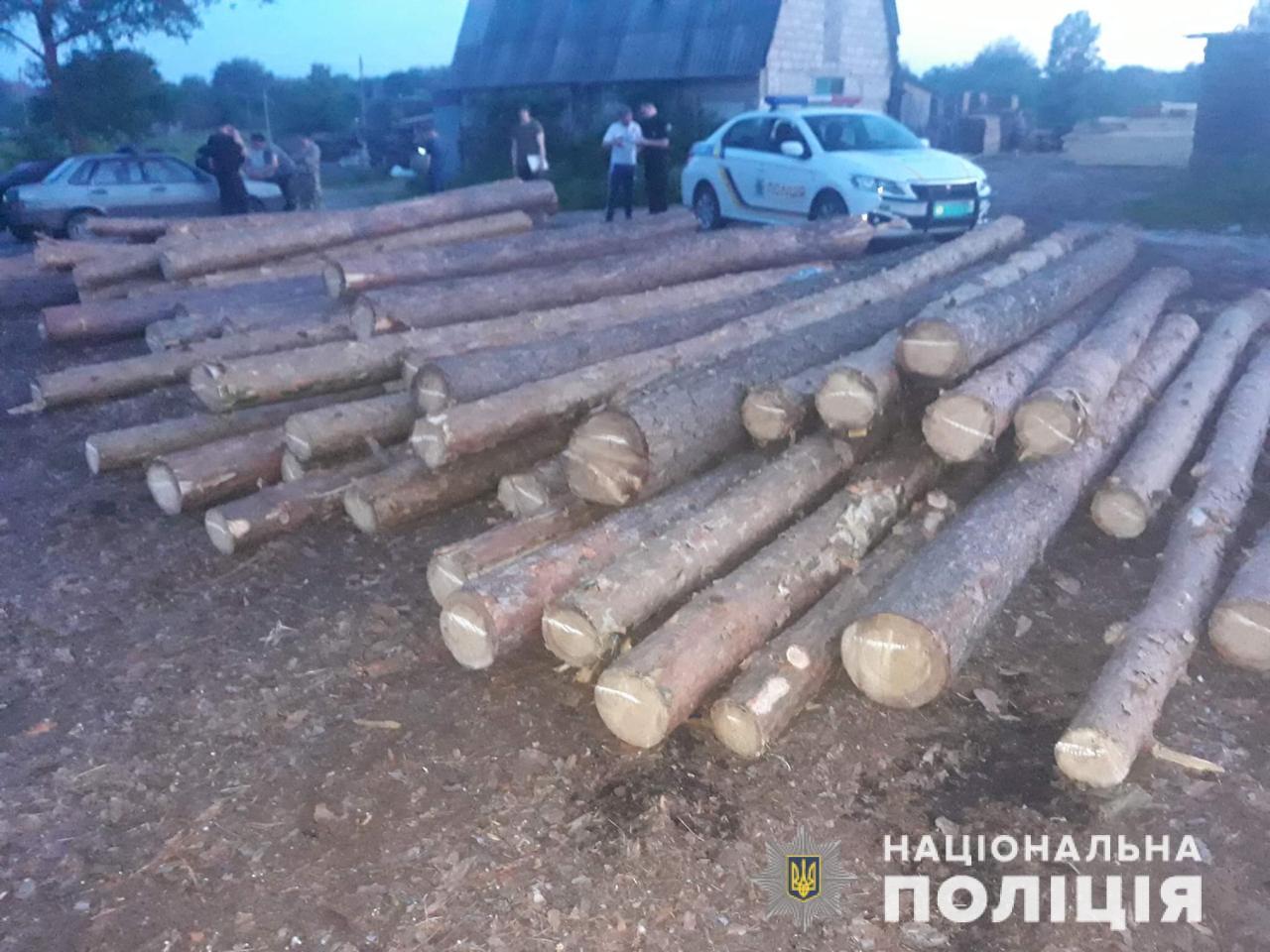 Злоумышленники вырубили лес на Харьковщине на сумму 120 тыс. гривен (фото)