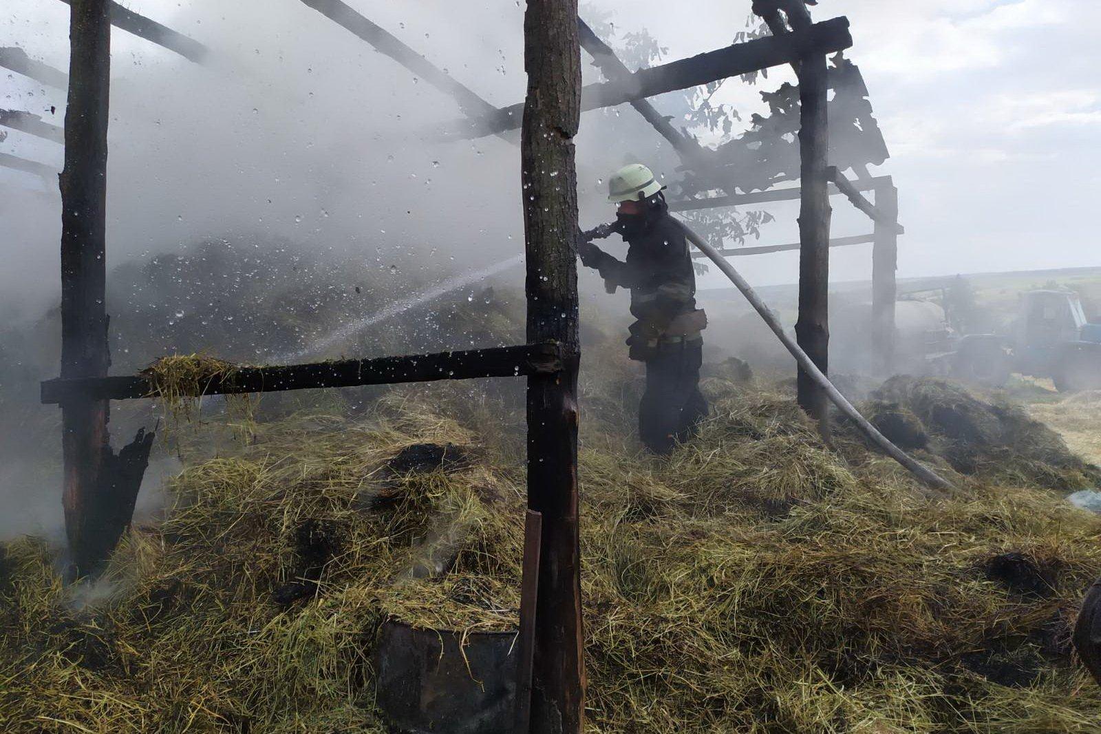 В Харьковской области спасатели 5 часов тушили сарай с сеном (фото)