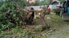 Коммунальщики приводят в порядок частный сектор в Немышлянском районе
