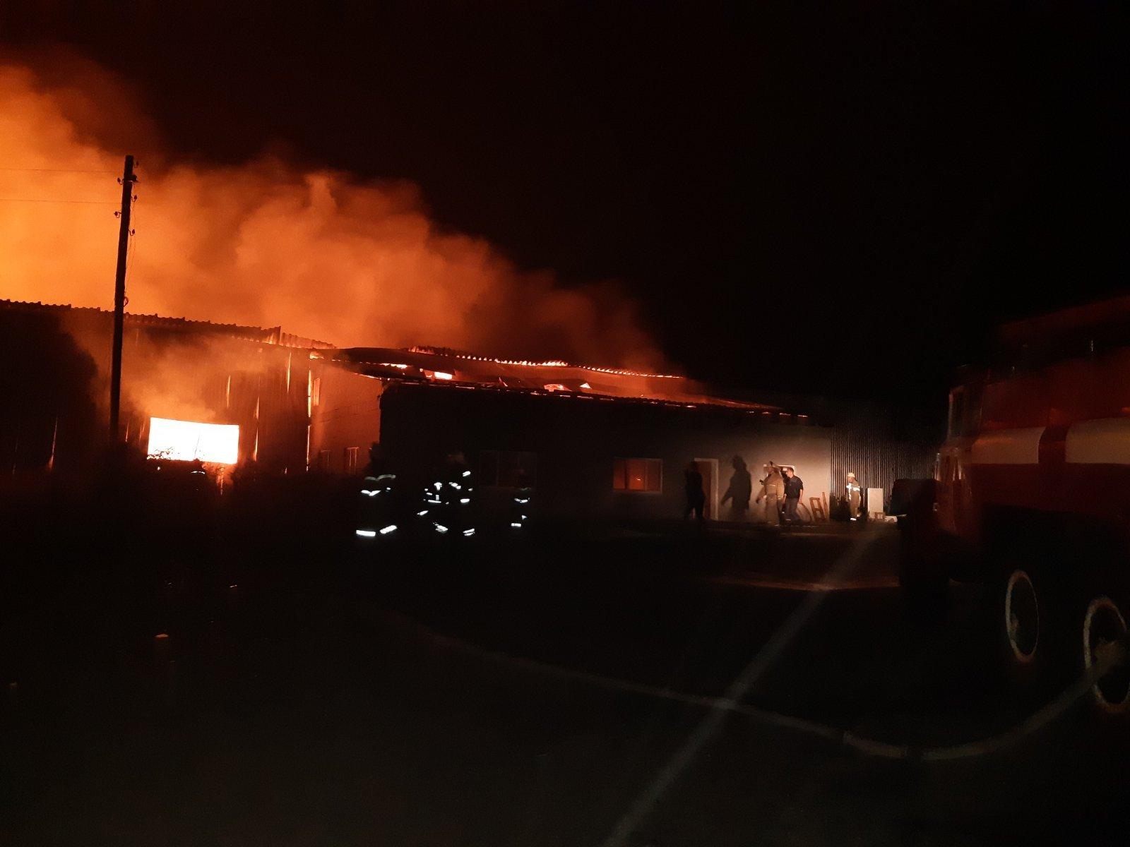 На Харківщині сталася велика пожежа на деревообробному підприємстві (фото)