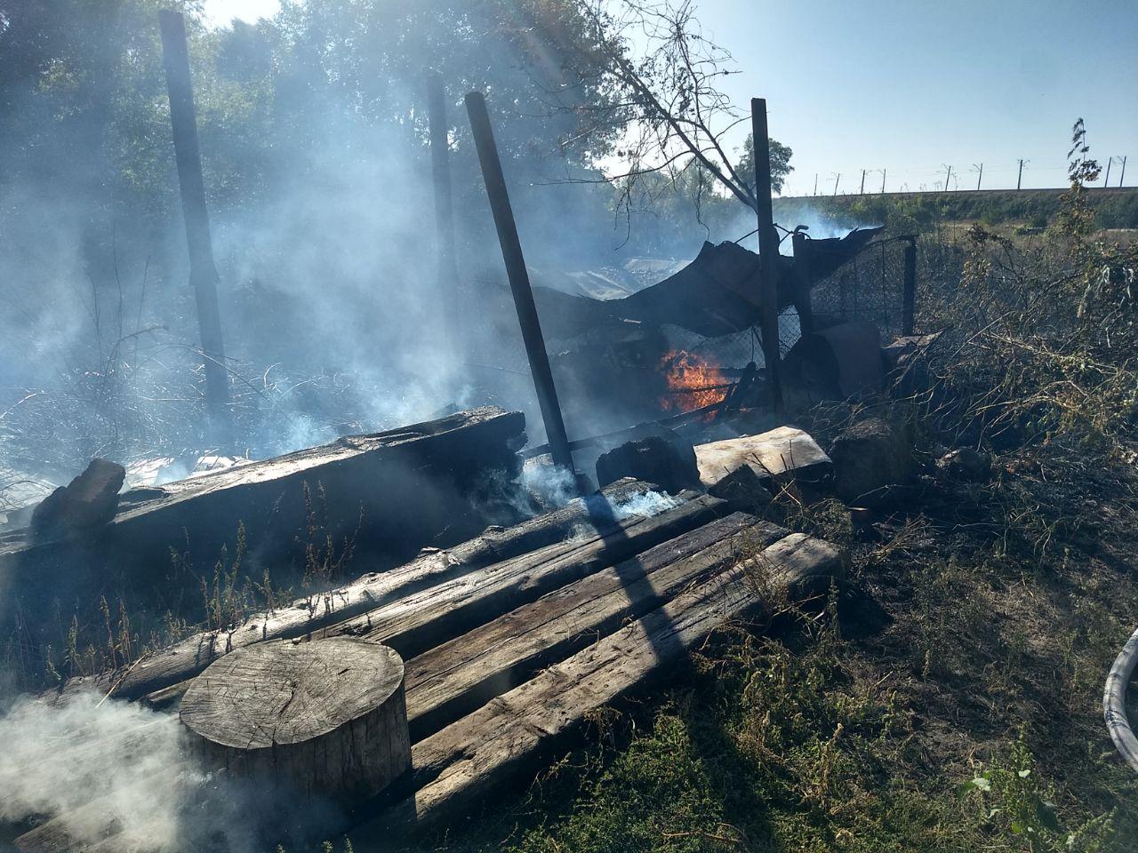 Из-за поджога неизвестным травы едва не сгорели жилые дома