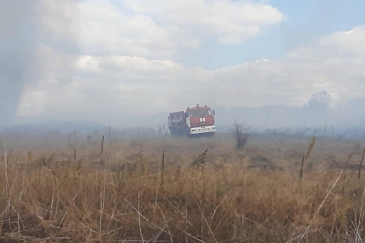 На Харьковщине спасли лес от огня (фото)