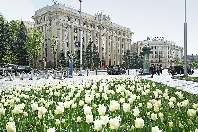 На Харьковщине пройдет конкурс медицинских минипроектов для громад