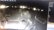 Появилось видео падения самолета Ан-26 с камер видеонаблюдения
