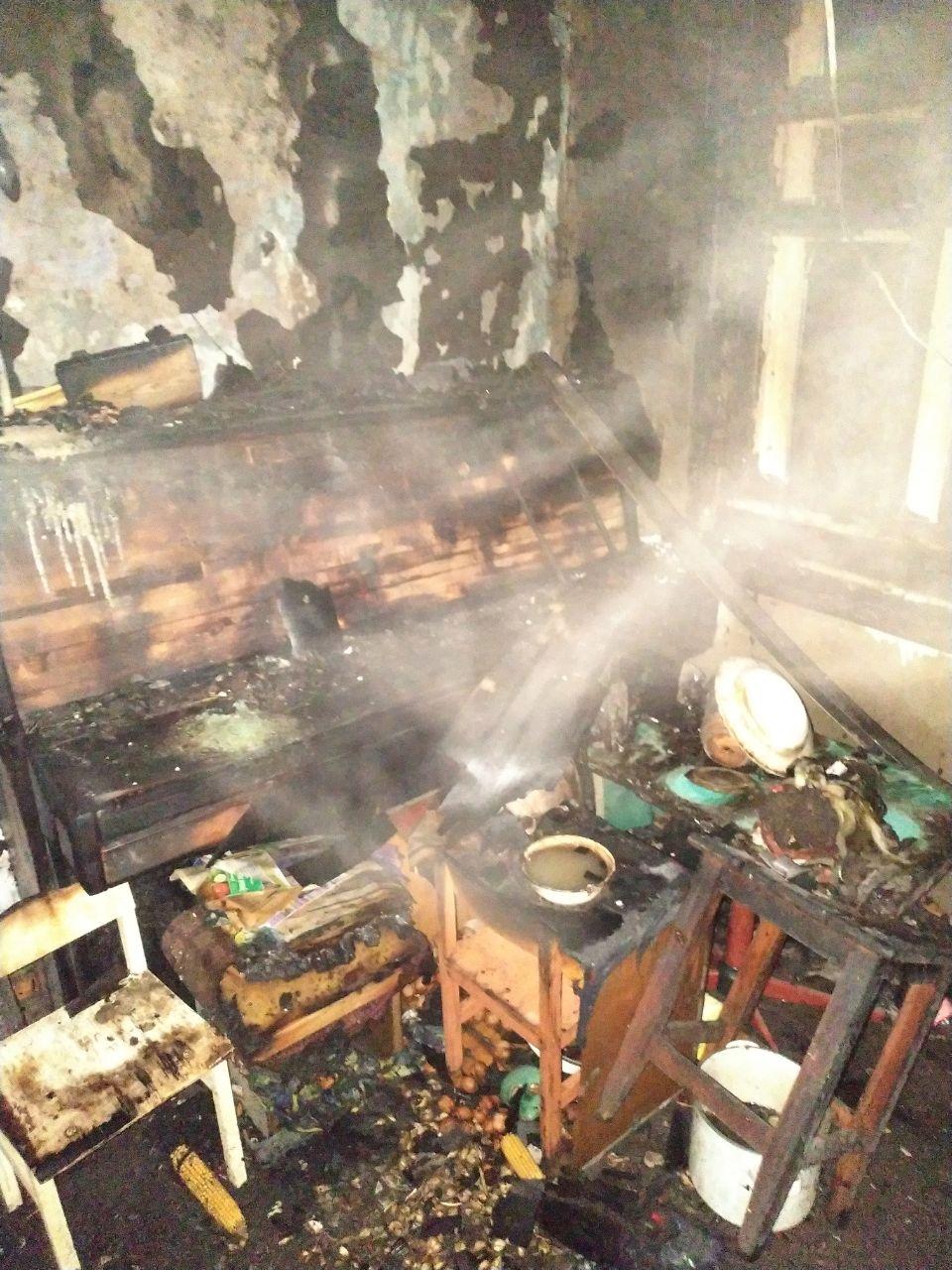 Под Харьковом на пожаре погиб человек (фото)