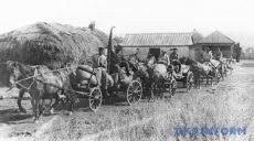 Історикиня розповіла про Голодомор на Харківщині
