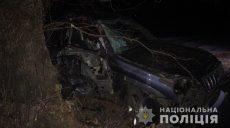 На Харьковщине в ДТП пострадали трое детей (фото)