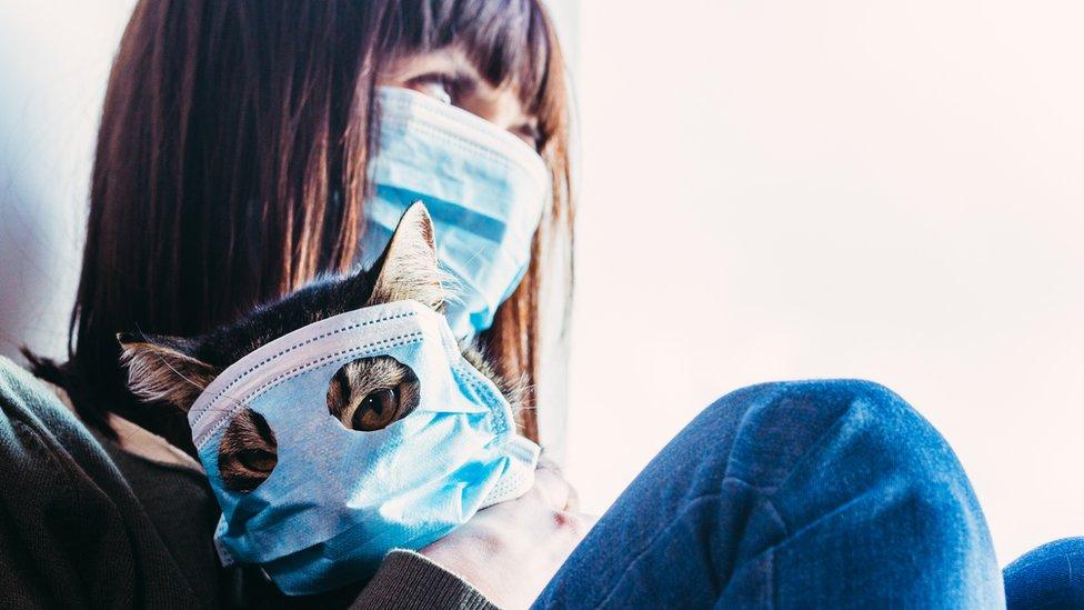 В ВОЗ обновили правила пользования масками в период пандемии