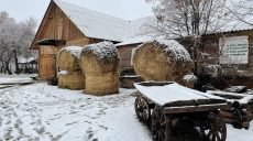 На Харьковщине ждут выделения средств на реставрацию музея Григория Сковороды