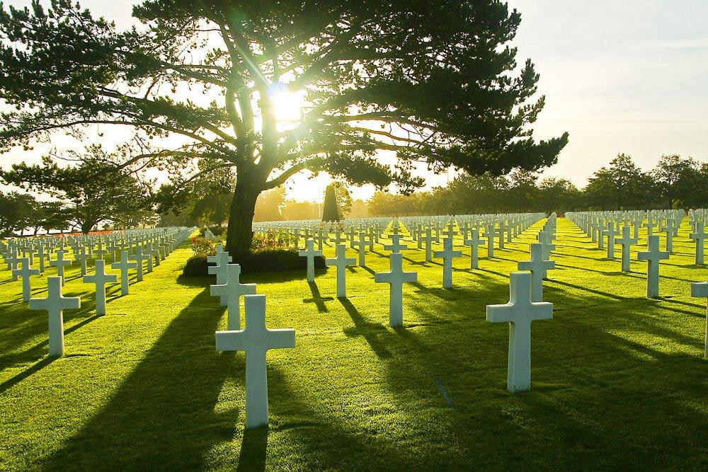 Компост из умерших: в США официально разрешили новый способ утилизации
