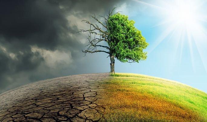 Аномально жаркий 2020-й в Харьковской области: как глобальное потепление влияет на регион