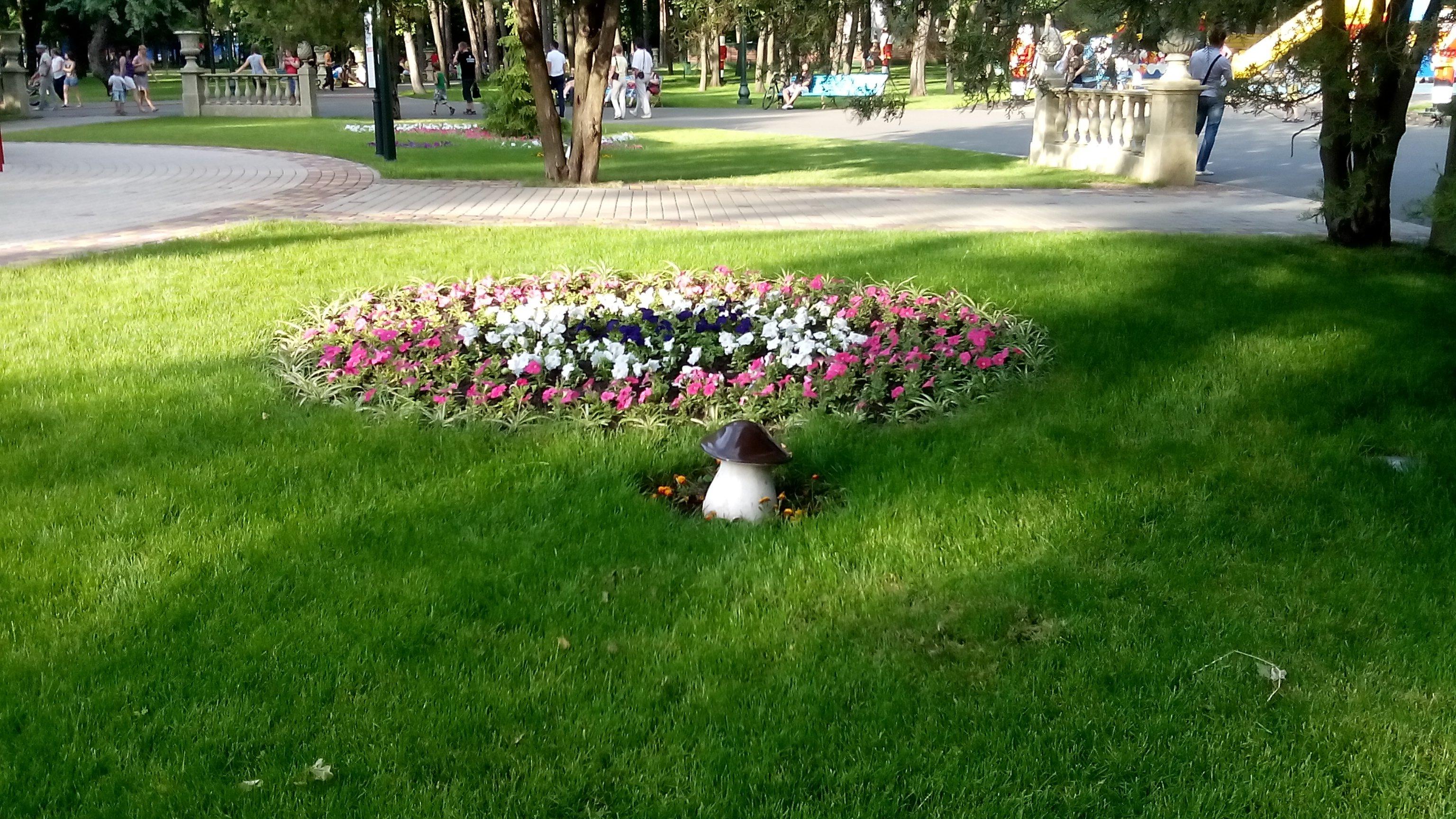 Харьковский парк потратит более 1,5 миллионов гривен на однолетние цветы