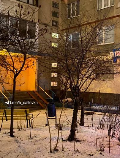 В Харькове девушка выпала из окна многоэтажки