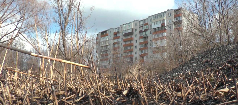 120 пожеж в екосисемах за три доби: чому Харків та область оповиті чорним димом (відео)