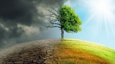 """""""Глобальное засыхание"""": жару в Европе признали рекордной за 2000 лет"""