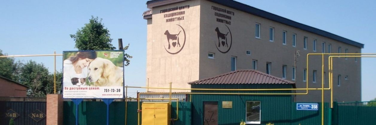 """В КП """"Центр обращения с животными"""" закончился корм для животных"""