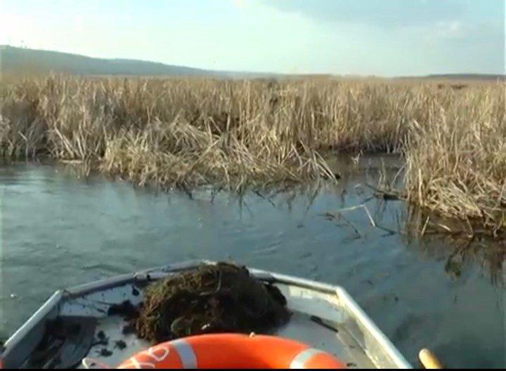 Браконьеры бросили сети с 29 кг прудной рыбы