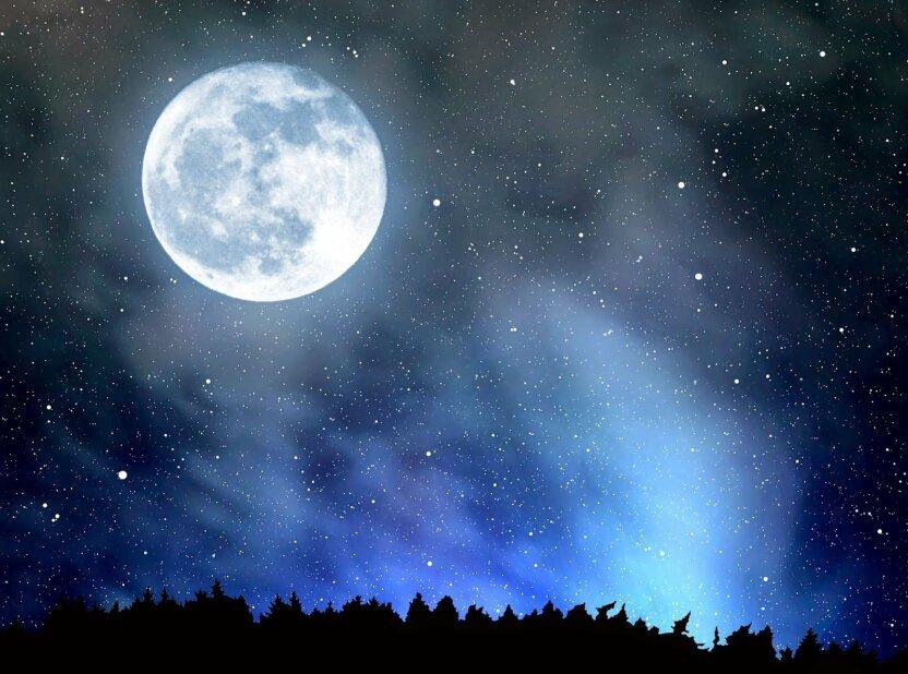 Компания Илона Маска доставит астронавтов на Луну