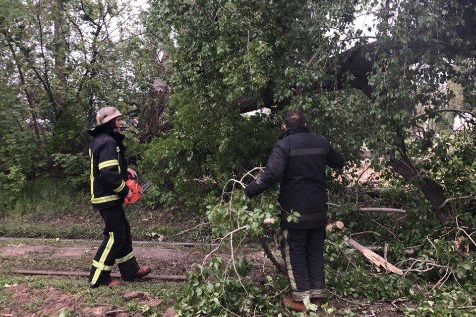 Из-за порывов ветра в Харькове огласили желтый уровень опасности – когда погода наладится