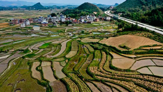 """В Китае небывалый бум сельского """"зеленого"""" туризма — всему виной пандемия коронавируса"""