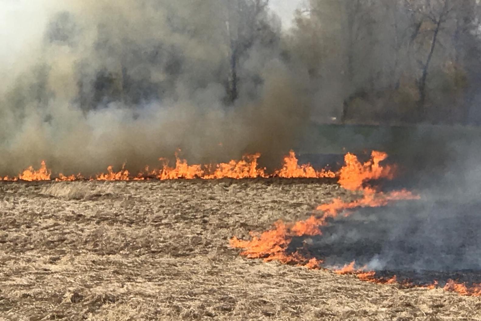 На Харьковщине нашли поджигателя