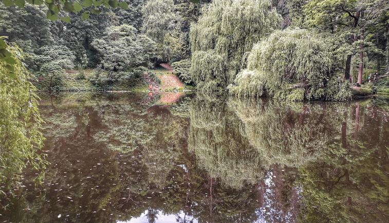 Экологи назвали ТОП-5 интересных мест для отдыха на Харьковщине (фото, видео)