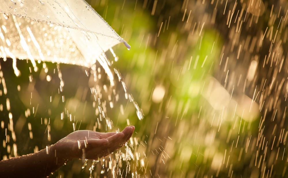 Дожди, грозы и утренний туман: прогноз погоды на выходные в Харькове