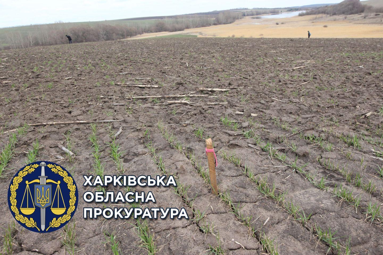 На Харьковщине территорию поселения бронзового века использовали под ведение сельского хозяйства