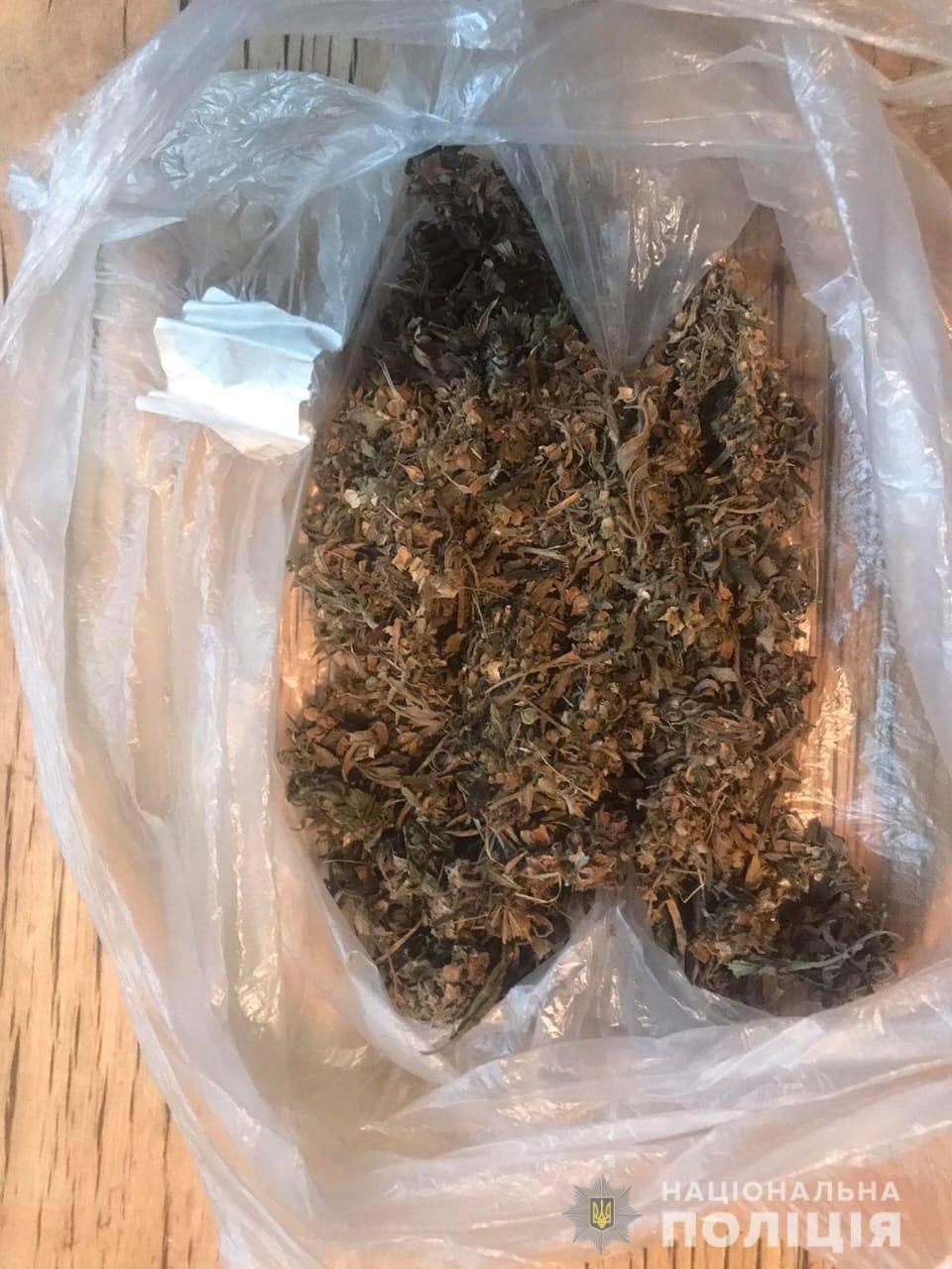 Харьковчанин признался, что найденные у него дома растения - каннабис