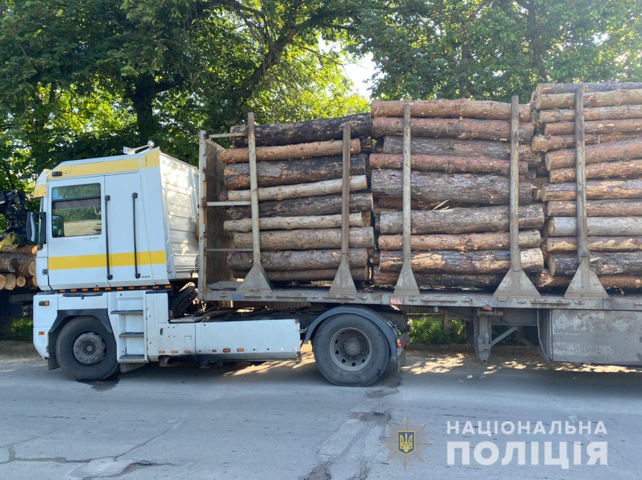 В Харьковской области остановили два грузовика з незаконно срубленными соснами (фото)