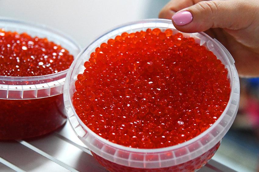 Детский лагерь в Харьковской области закупил 32 кг красной икры на 100 тысяч гривен