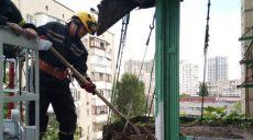 В столичной многоэтажке рухнул балкон с тонной земли под грядки с ягодами (фото)