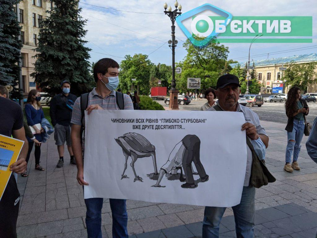 В руках у людей плакаты, призывающие чиновников вытащить голову из песка