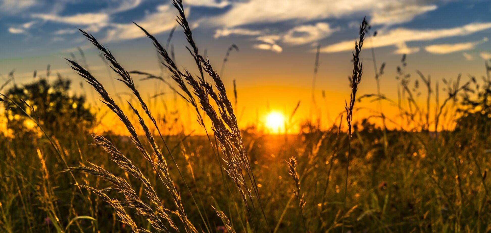 21 июня. Как ощущают день летнего солнцестояния украинцы