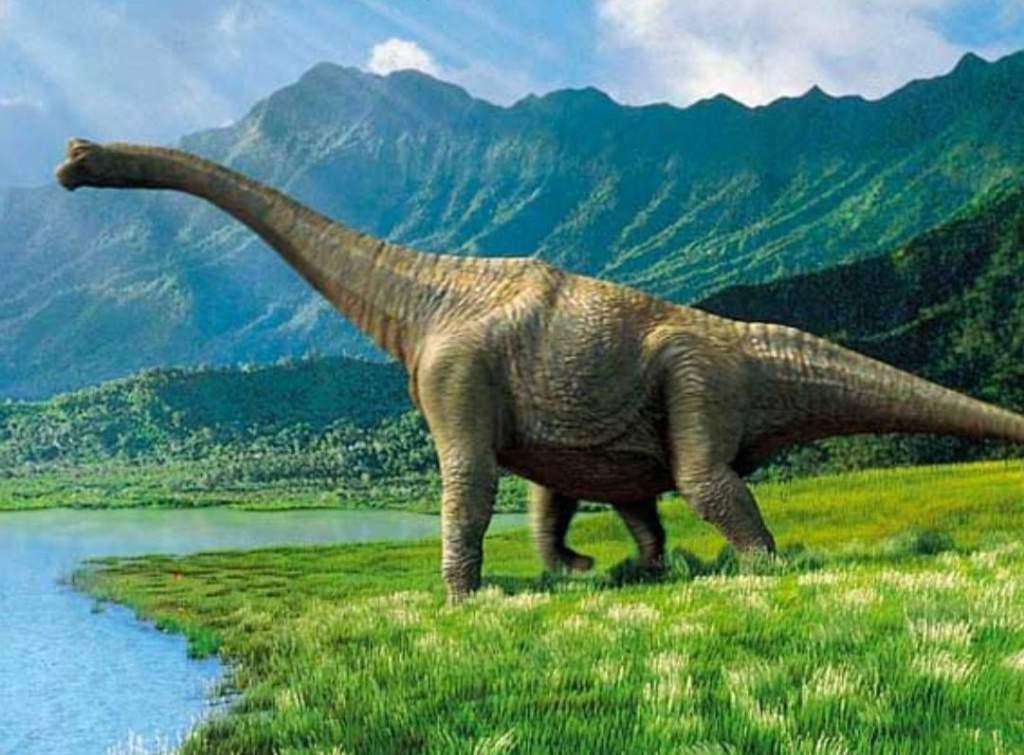 Зауроподы - крупнейшие динозавр