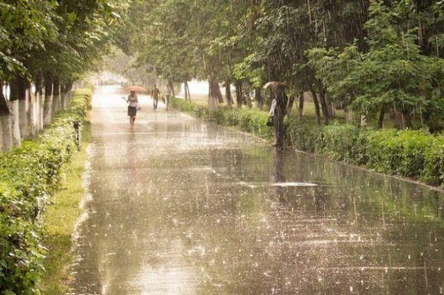 Надеемся, будет не катастрофично – синоптики о прогнозе погоды в Харькове на сутки