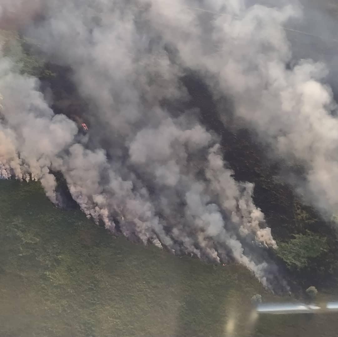 В Харьковской области горят три гектара поля (фоторепортаж)