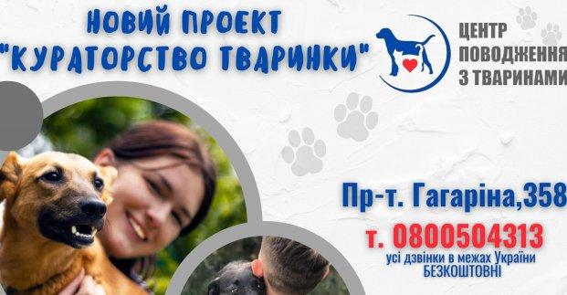 Харьковчанам предложили новую форму общения с собаками и котами