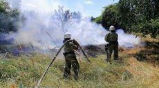 Более 22-х гектаров сухой травы и ветвей выгорело в лесах и полях Харьковщины за сутки
