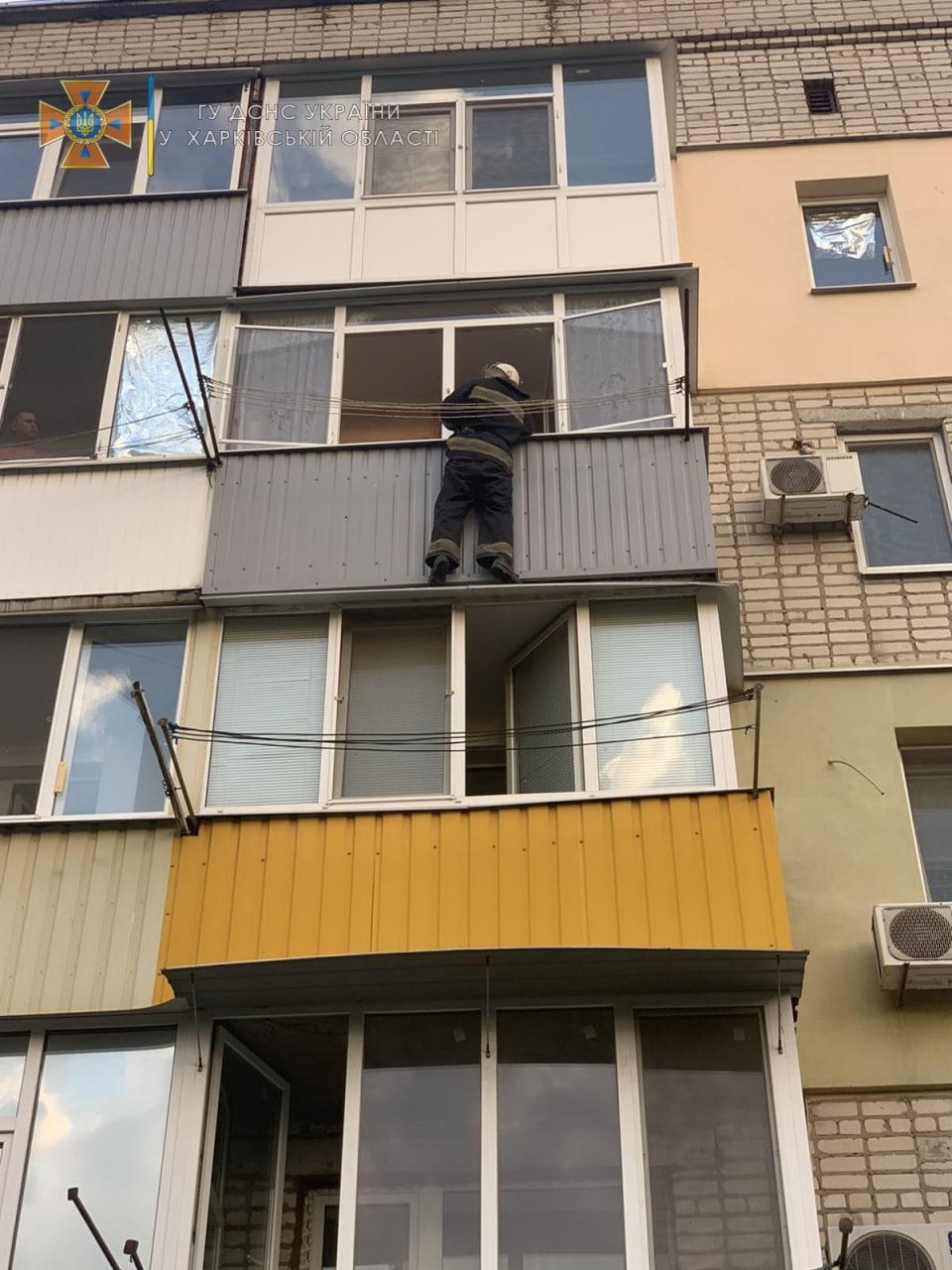 В Харьковской области пожарные через окно спасли запертых в квартире ребенка и его отца