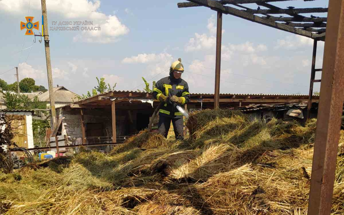В частном дворе на Харьковщине вспыхнуло 14 тонн сена - фото 2