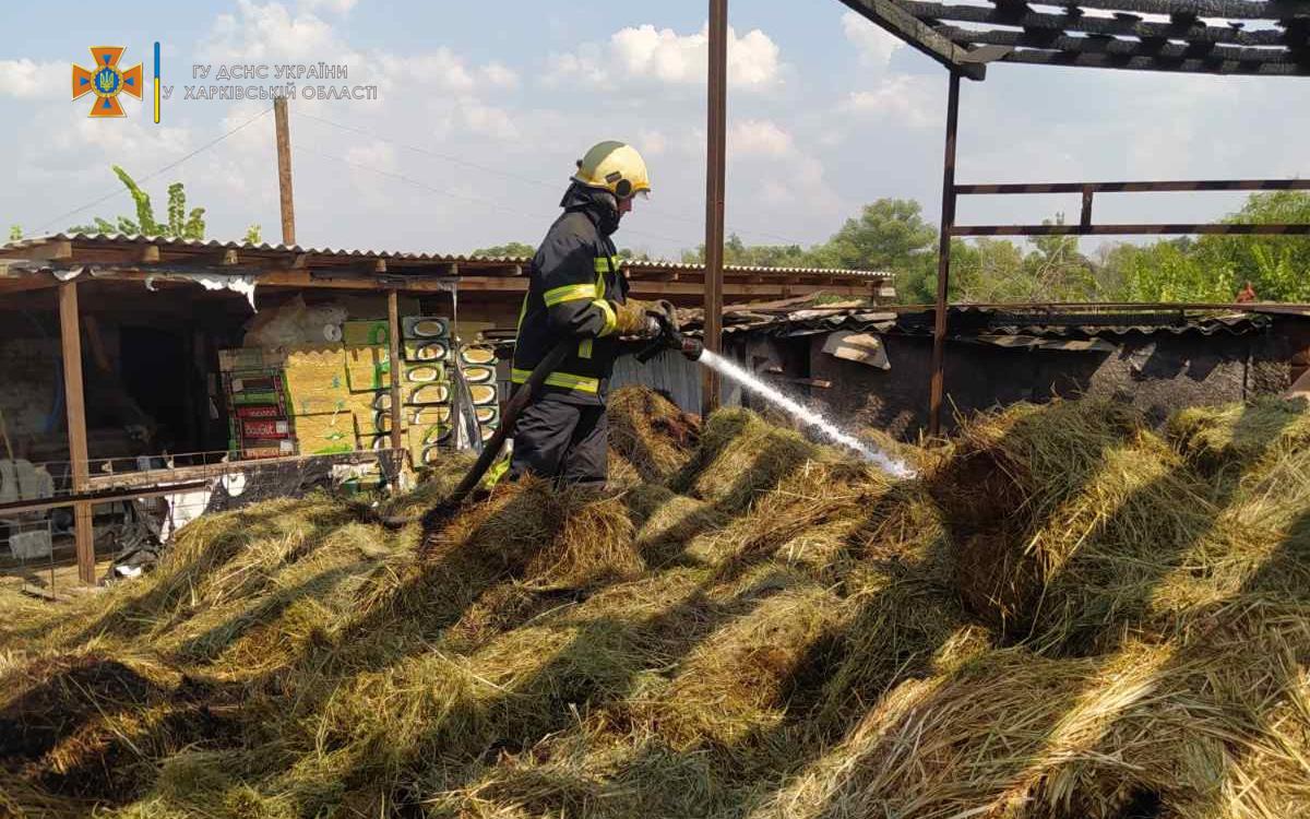 В Харьковской области вспыхнуло 14 тонн сена (фото)